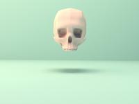 Blender Skull