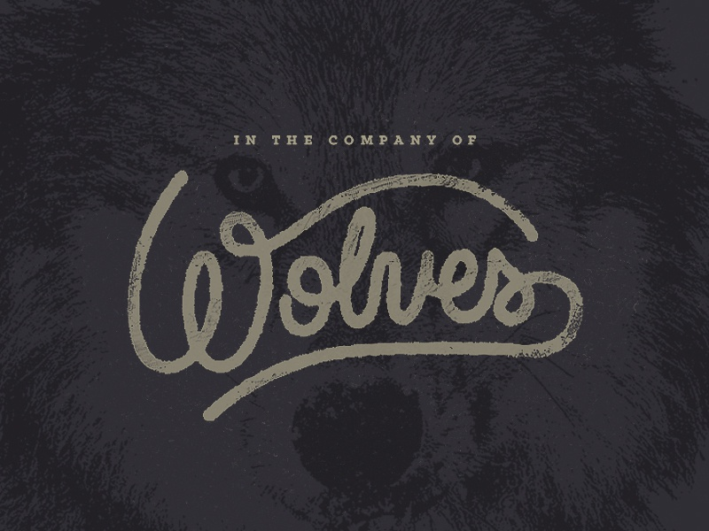 In The Company of Wolves incubus wolves handlettering script custom typography wolf music rock and roll