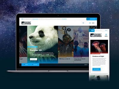 DMNS - Concept 2 columns museum denver website