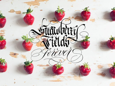 Strawberry Fields monochrome hand handlettered hand lettering illustrator illustration brand calligraphy lettering