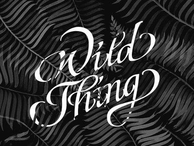 Wild Thing italic hand script typography wild botanical fern plant monochrome hand lettering illustration calligraphy lettering