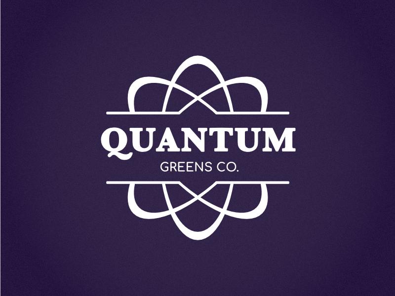 Quantum Logo wordmark identity branding vector design logo