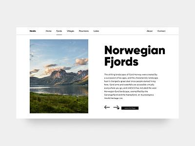 Norwegian Fjords hero ux fjords ui design nature webdesign typography ui minimal design minimalism norway fjord