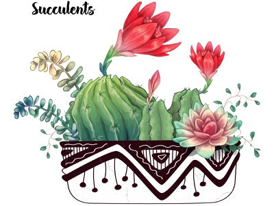 Cactus Flowers Pot1 1 6 creator mexico doodle pattern flora decorative tropical exotic vector cacti mexican floral flower green nature plant cactus