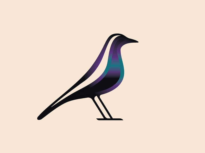 magpie luxury brandmark logo logodesign logos modern logo modern clean minimalist birds magpie bird crow