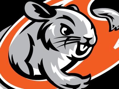 Chinchilla mouse rabbit chinchilla sports mascot logo logo design logos cartoon