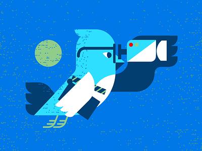 Twitter Video twitter social media socialmedia ads advertising film video birds bird geometric modern illustration