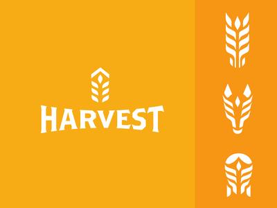 Harvest Soap Branding