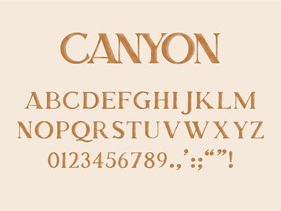 Canyon Typeface lettering nashville typeface fontself procreate branding music typography