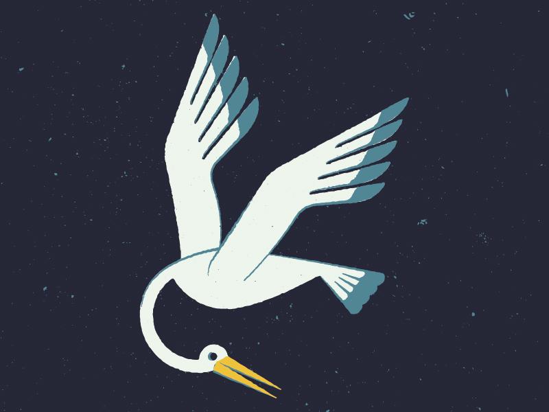 Stork stork texture illustration