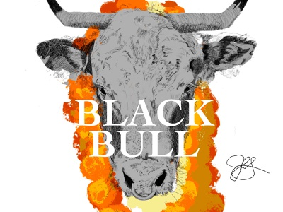 Black Bull type drawing art black yellow orange illustration black bull