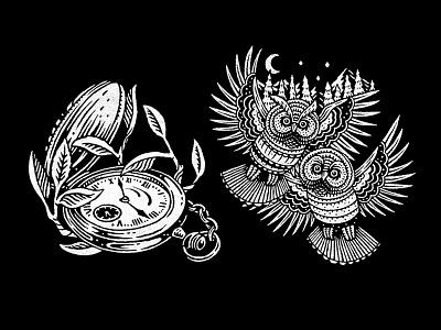 Branding Illustration owls illustration
