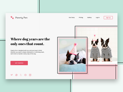 Landing Page  003 party birthday puppy dog french bulldog daily ui 003 daily ui