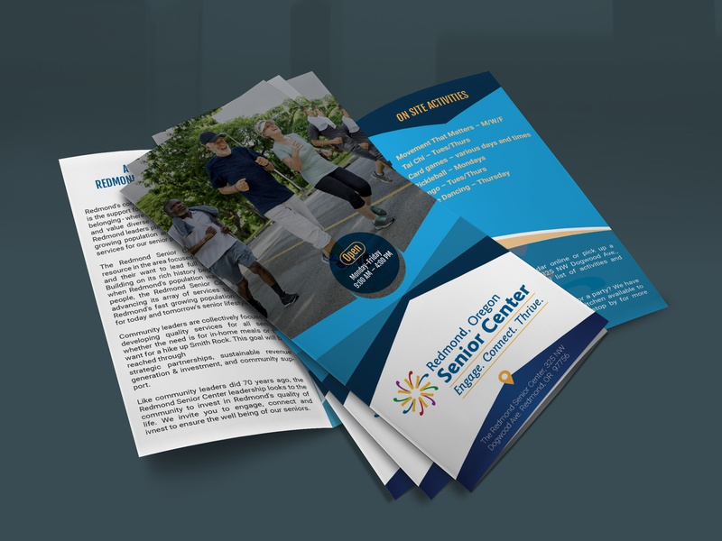 Trifold Flyer & Brochure Design graphicdesign bifold flyer brochure trifold flyer freemockup mockup trifold brochure brochure design