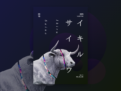 Ikiru Saino katakana layout graphic design