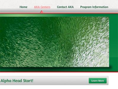 Aka Website website demo web design