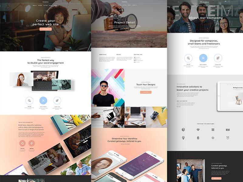 Pandia wordpress template marketing website design design agency