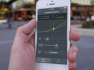 Finance simulator