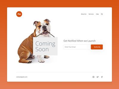 Coming Soon pets 048 design concept web dailyui ui coming soon