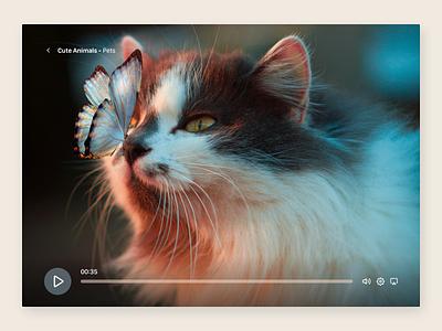 Video Player pets design 057 video player web dailyui ui