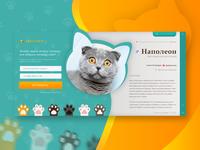 Pets' Ads UI Shot