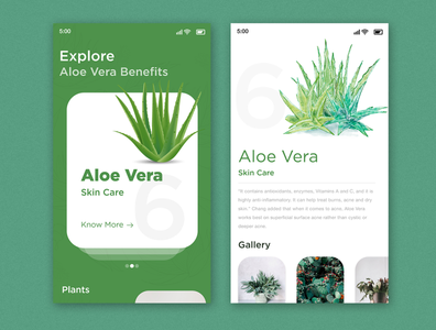 plant explore