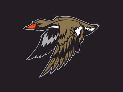 Ducks  anaheim ducks nhl hockey logo design concept rebranding
