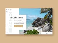 Conceptual Web Page Mock Up