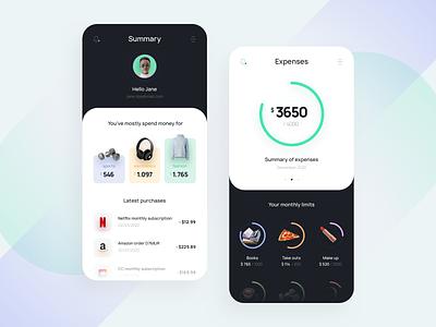 Budget analysis app 📈 budget analysis minimal icon mobile app design mobile app typography ux ui branding design