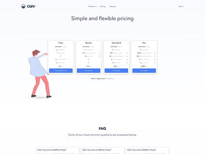 curv.io - Pricing page vector app flat  design price table pricing table pricing plan pricing page pricing saas landing page saas