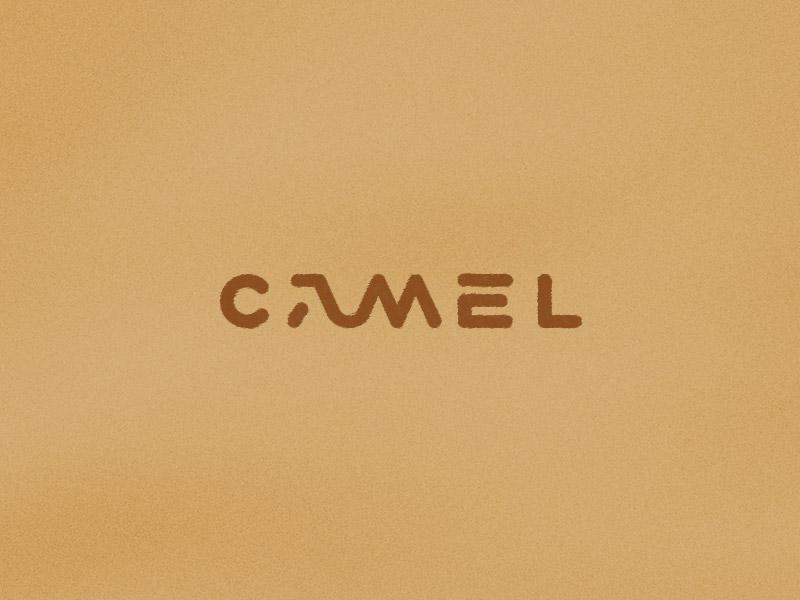 Camel camel hump sand roko kerovec rokac