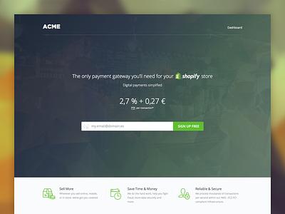 Payment gateway landing shopify spanish payment gateway landing page green