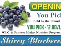 Blueberry Hill Ad