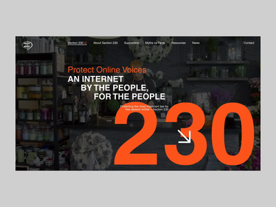 Protect Online Voices web design website new york los angeles design agency branding animation ux ui design
