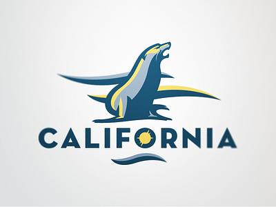 California 2 california sea lion