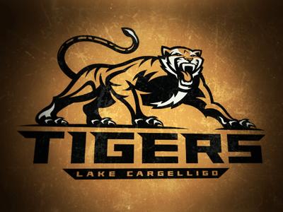 Dribbble  0023 tigers1