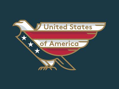 United States of America illustration eagle states united