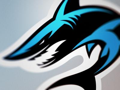 Shark Logo sharks logo shark
