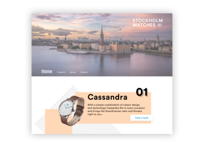 Landing page | Daily UI Challenge #003