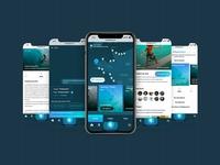 Surfing France - Chatbot & Map App for Surfer