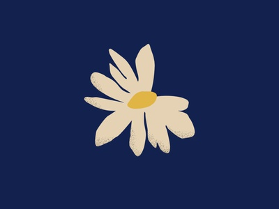 Memory, Truth, Justice uruguay silence march flower daisy