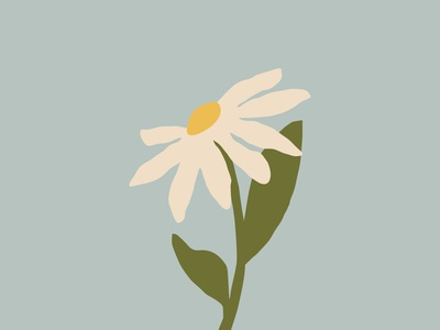 Daisies make me happy flower illustration illustration pastel color minimalism vector illustration vector flower daisy
