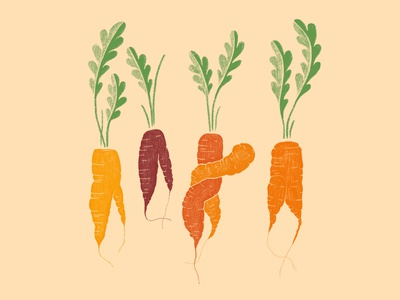 Carrots are awesome vegetables food illustration veggies carrots illustration