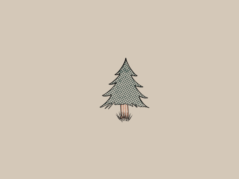 Pine tree nature camping icon pine tree graphic designer graphic design digital artist procreate illustration