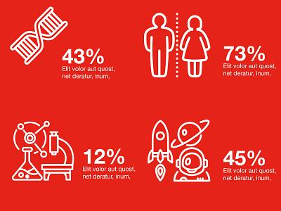 Educational Brochure infographic indesign print design print