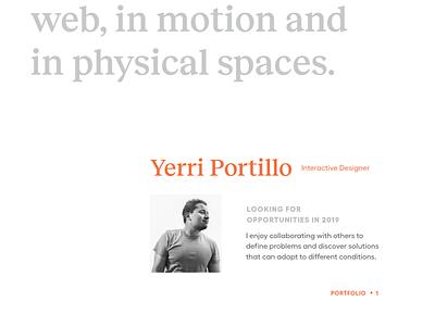 Print Portfolio branding design about typography type brand