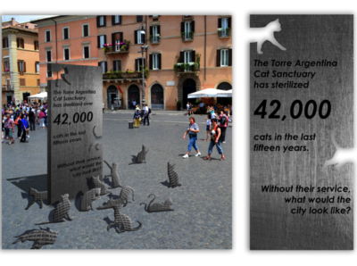 Stray Cat Awareness Campaign volunteer mock up custom mockup photo manipulation stray cats campaign awareness social