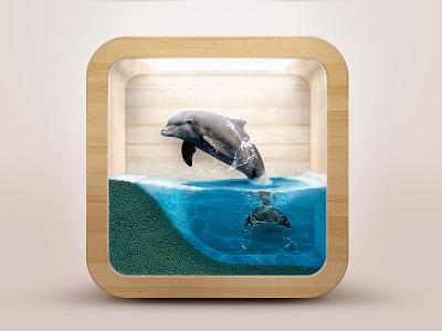 Dolphin iOS Icon dolphin ios icon water 3d