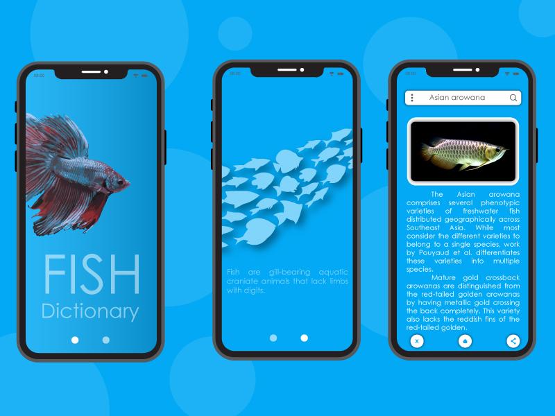 Fish Dictionary ui design app illustration