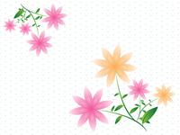 Flowers Back Ground